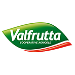 Valfrutta Chopped Tomatoes In Tomato Juice 400g