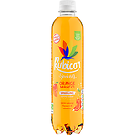 Rubicon Spring Orange Mango Flavoured Sparkling Spring Water, 500ml