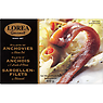 Lorea Gourmet Fillets of Anchovies in Olive Oil 800g