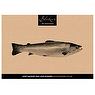 Bleiker's Finest Hot Smoked Fish Selection 180g - Hot Smoked Salmon