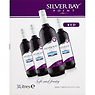 Silver Bay Point Red 3 Litres